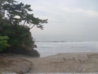 2013年07月06日 菖蒲田・2