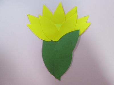 福寿草10