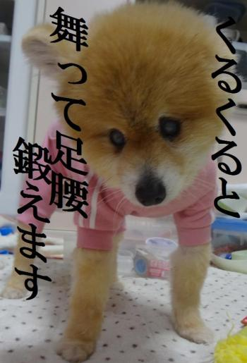 縺ー繝シ縺ー2_convert_20130621212638