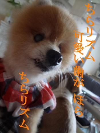 縺ー繝シ縺ー3_convert_20130621213358