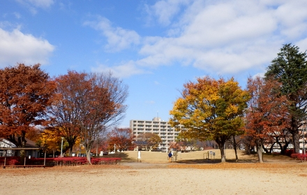 南部公園(1)