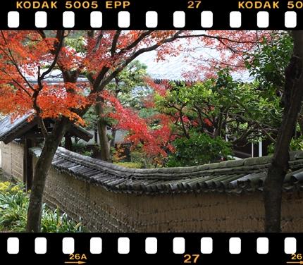 201312_IMG_0543.jpg