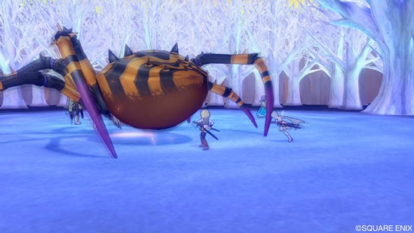 20131229_蜘蛛2