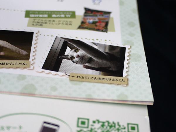 131209_kaiteki3.jpg