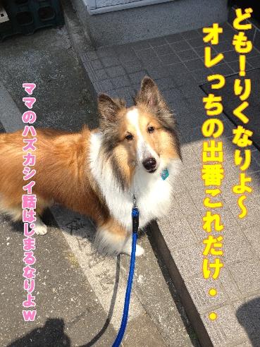 りくごあいさつ 2013.6