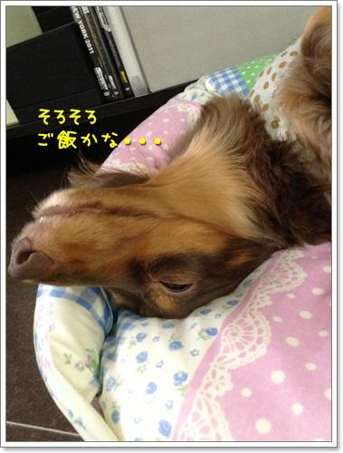 20130925-07.jpg