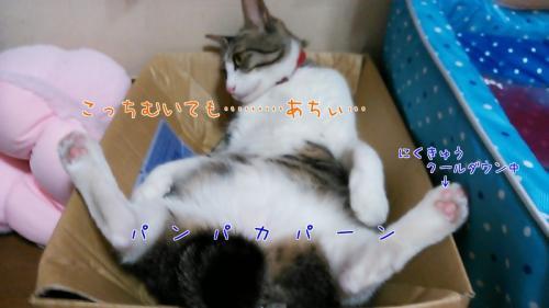 こうめ316