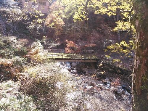 箕面の滝14