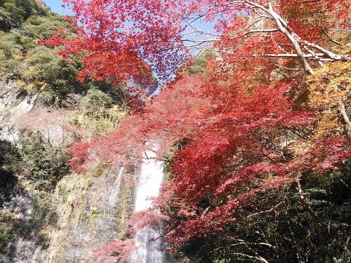 箕面の滝16