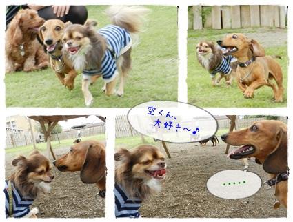 ツナ&空くん2013092901