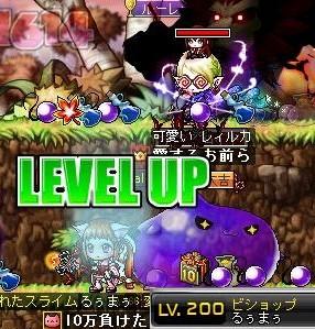 Maple130909_010606.jpg