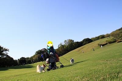 20131013005.jpg