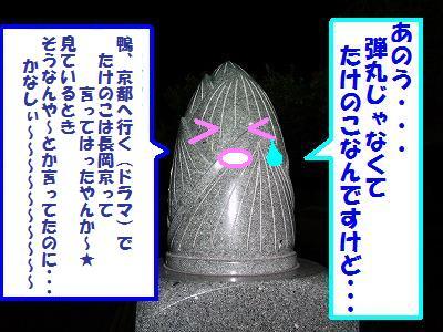 10_20130729031549.jpg