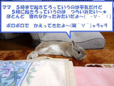 1_20130525011305.jpg