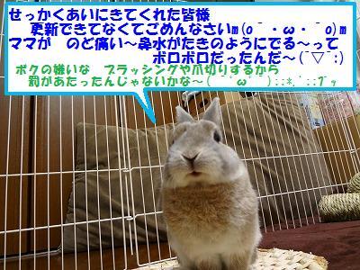 1_20131008020935da0.jpg