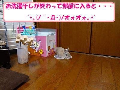 2_20130810025514b82.jpg