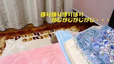 3_20130406023040.jpg