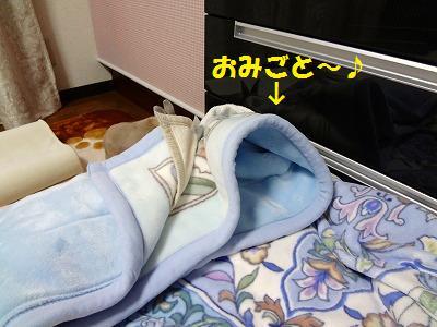 3_20130410042130.jpg