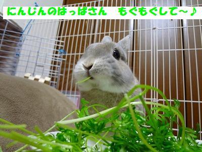 3_20130505015903.jpg
