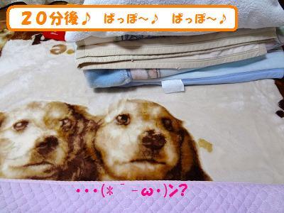 3_20130630023717.jpg