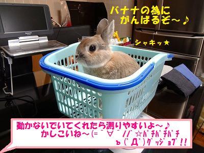 3_20131030020632990.jpg
