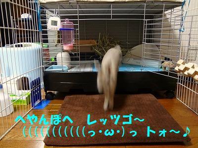 4_20131107015901598.jpg