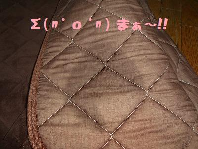 7_20130418011234.jpg