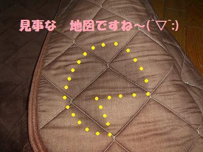 8_20130418011235.jpg