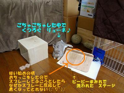 8_201310160235292ee.jpg