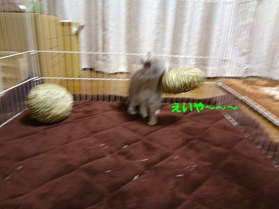 8_20131022231548f7d.jpg