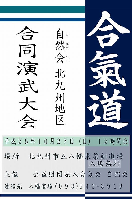 2013 演武大会 パターン2
