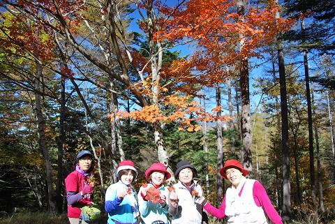 紅葉と元山ガール
