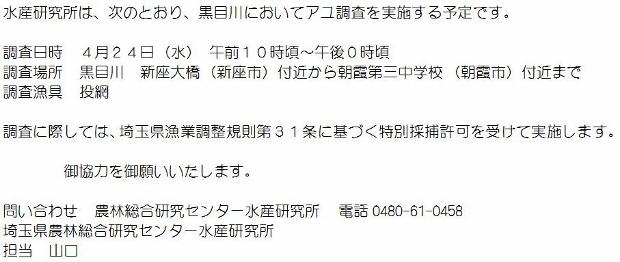 250425 水研黒目川調査 (620x262)