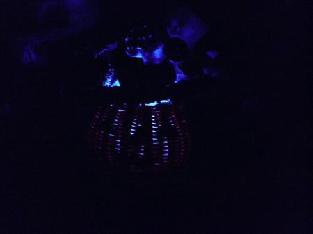 P9250051_convert_20130925222000光るランタン青のみ