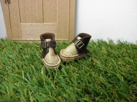 PB140274_convert_20131114183909みっちーの靴
