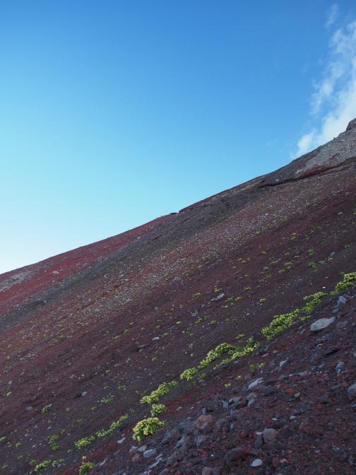 富士山の赤土
