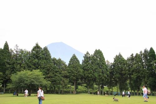 朝霧高原32