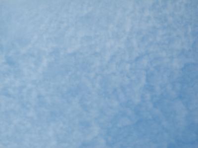 DSCN8449_convert_20130910173129.jpg