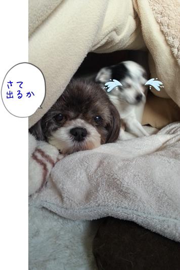 20131027_163448.jpg