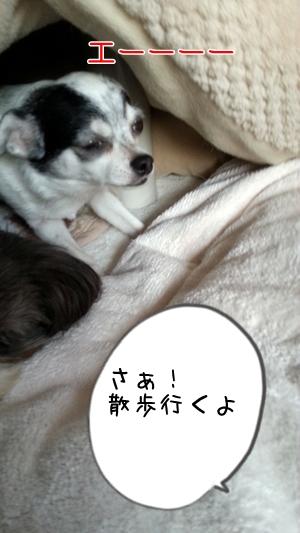 20131027_163515.jpg