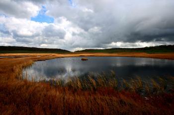 既に晩秋の佇まいを見せる雨竜沼湿原。
