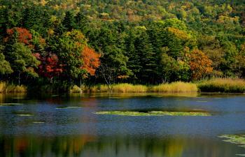 知床五湖。