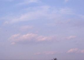 11月08日の天候