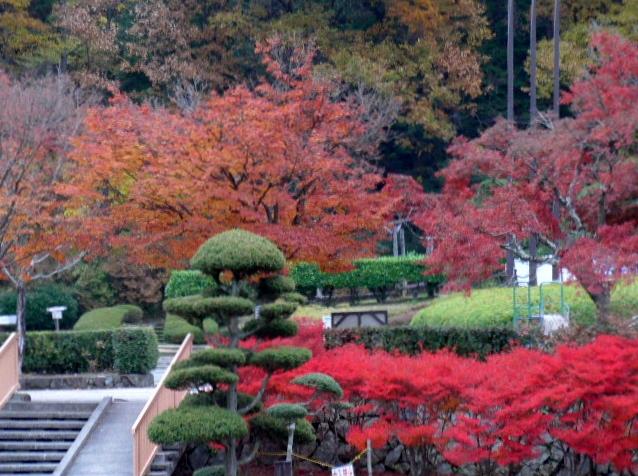 2013-11-27 猪名川高原ロッジ 001