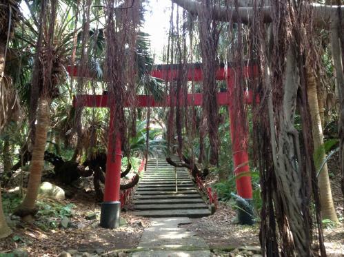 20130503_御崎神社-005