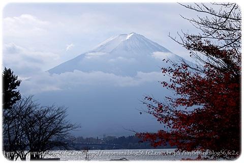 sayomaru11-391.jpg