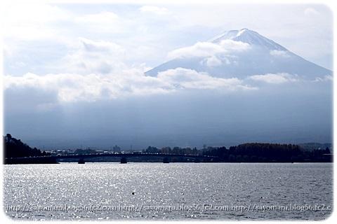 sayomaru11-392.jpg