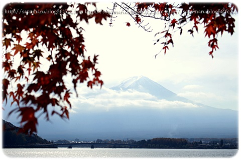 sayomaru11-394.jpg