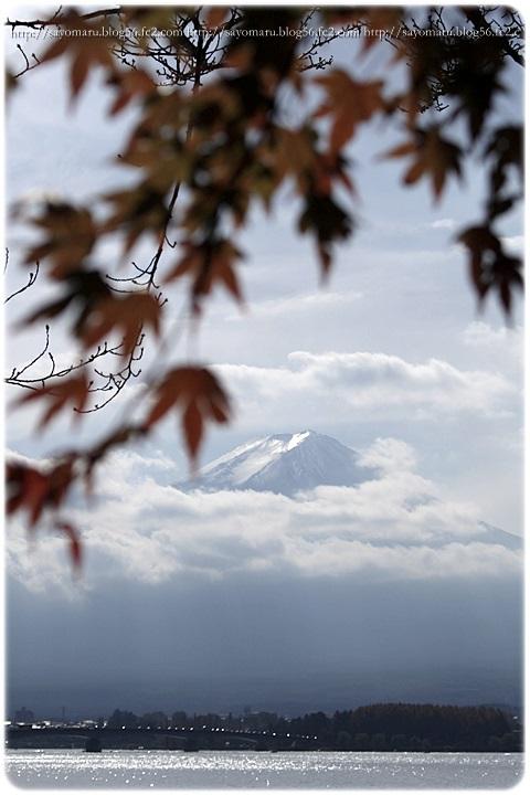 sayomaru11-395.jpg