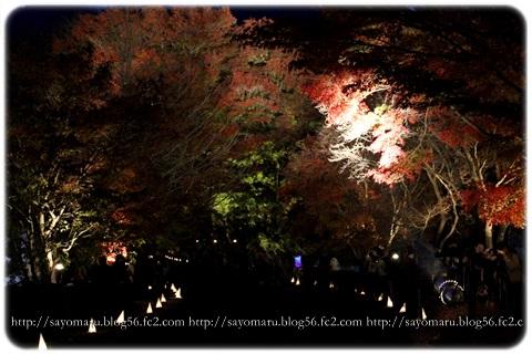 sayomaru11-402.jpg